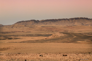 désert du neguev