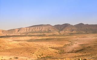 désert du neguev3