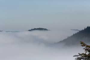 un matin de brume  Vosges du nord